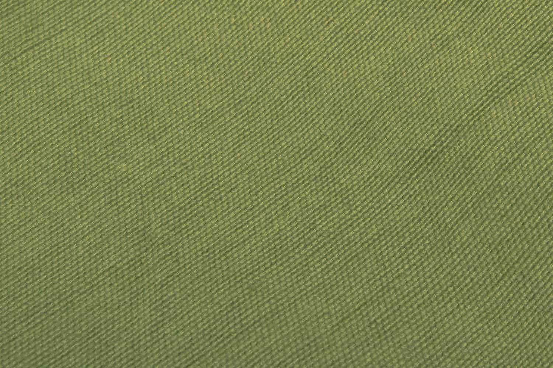 ecomundy kleur: palm groen